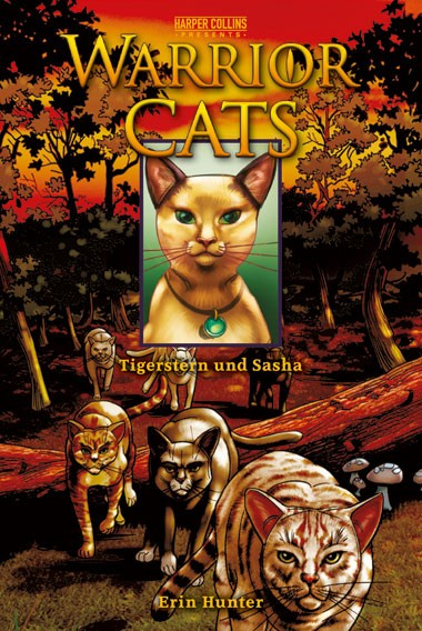 Warrior Cats, Band 02: Tigerstern und Sasha