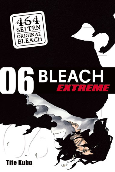 Bleach EXTREME, Band 06