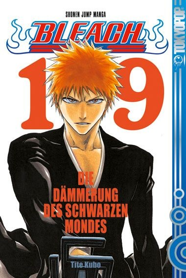 Bleach, Band 19